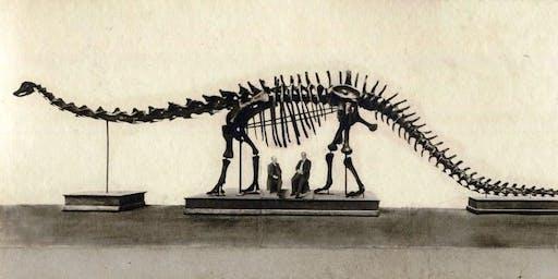 """Visitaalla mostra """"Un dinosauro americano a Bologna"""" - 3€ - Speciale Card Musei"""