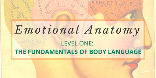 Emotional Anatomy: Level One - The Fundamentals of Body Language