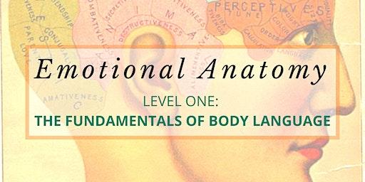 Emotional Anatomy: Level One - The Fundamentals of Body Language