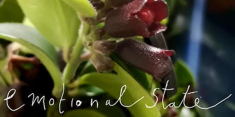 Emotional State - Pop Up Plant Emporium and Gifts tickets