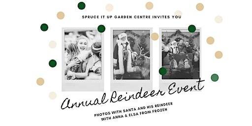 Annual Reindeer Event