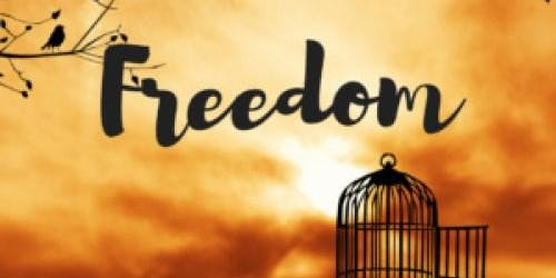 Reclaim Your Wholeness - The Big Freedom