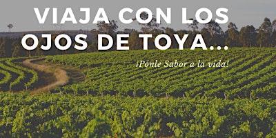 """Bocairent - Fontanares de los Aforines """"La Toscana Valenciana"""" (9ª Fecha)"""