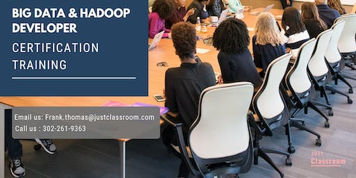 Big Data and Hadoop Developer 4 Days Certification Training in State College, PA