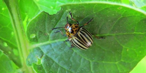 Integrated Pest Management Workshop