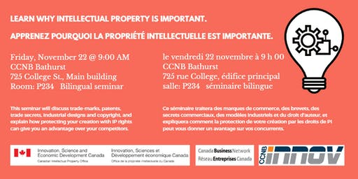 Learn About Intellectual Property/Formation sur la propriété intellectuelle
