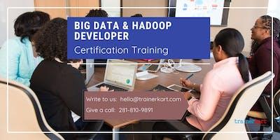 Big data & Hadoop Developer 4 Days Classroom Training in Churchill, MB