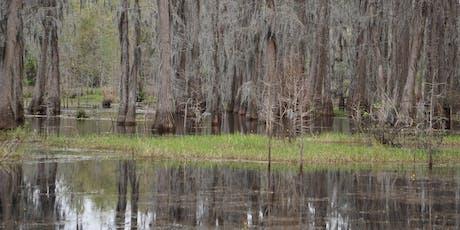Wetlands Explorers Tour tickets