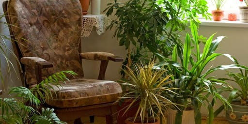 Free Seminar: Caring for Houseplants
