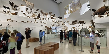 2020 Carlton: Melbourne Museum - MSA Summer Social Functions  tickets