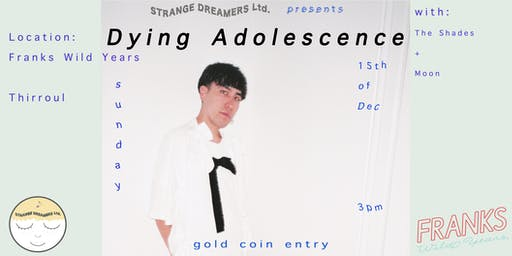 Dying Adolescence @ Franks Wild Years
