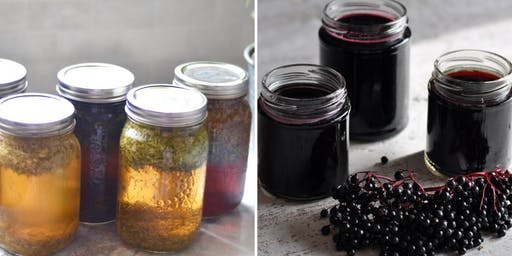 Boost Your Immune System with Elderberry Syrup and Herbs