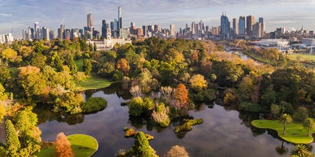 2020 South Yarra: Picnic in the Gardens - MSA Summer Social Functions  tickets