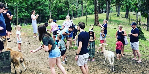 Christmas at The Lyell Deer Sanctuary Session 1