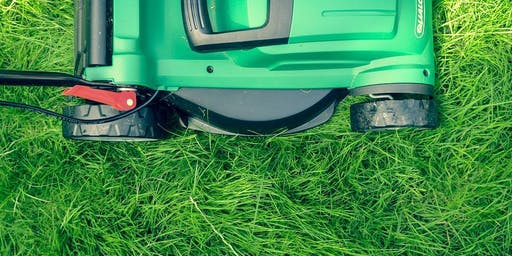 Lawn Care with Bob Dailey