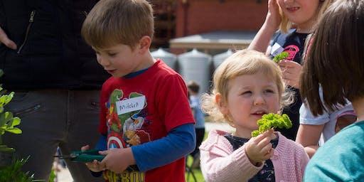 Little Sprouts Kitchen Garden Learning Program 2020. Term 3 & 4