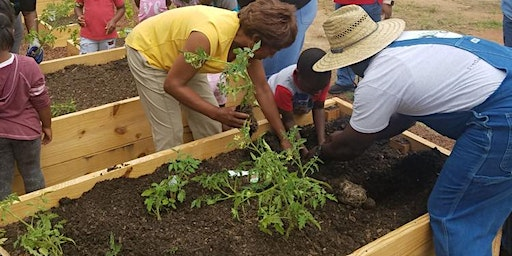 Farming in the City with Flint River Fresh
