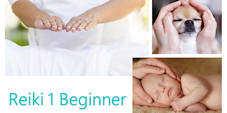 Reiki 1 Beginner - Class full, please register for other runs tickets
