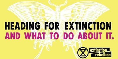Heading for Extinction - What business can do about it