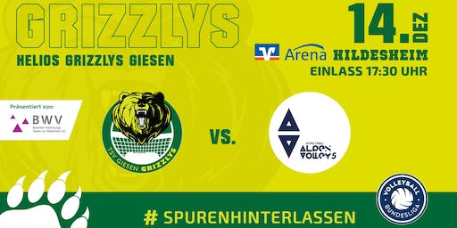 Helios GRIZZLYS Giesen vs. Hypo Tirol Alpenvolleys Haching