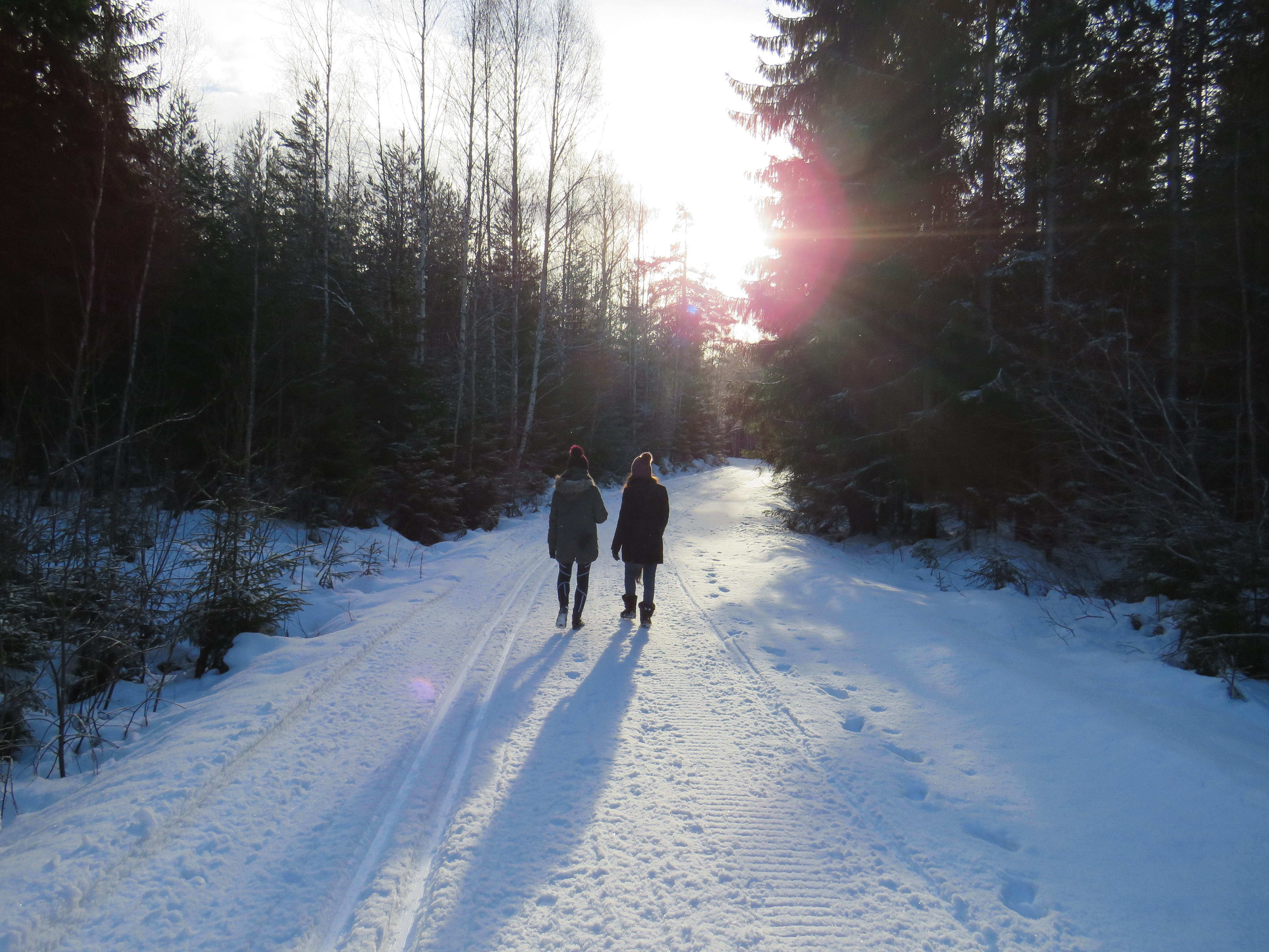 Back to Nature, Yoga in a Winter Wonderland