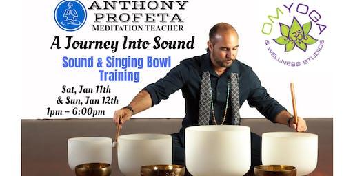 Sound Healing & Singing Bowl Training Workshop
