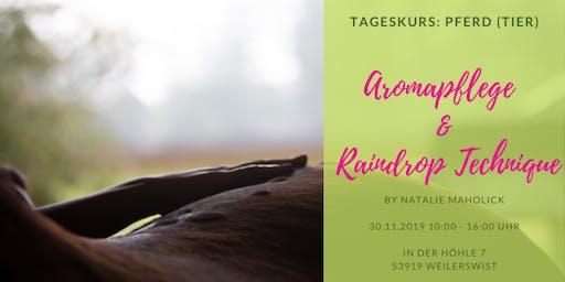 Aromapflege & Raindrop Technique am Pferd (Tier)