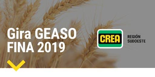 GIRA GEASO - FINA 2019