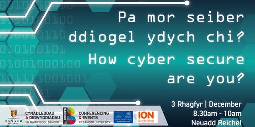 Pa mor seiber ddiogel ydych chi? // How cyber secure are you?