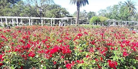 Palermo Jardínes Históricos, Rosedal y Alrededores entradas