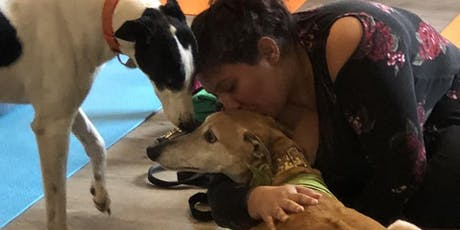 Doggy Noses & Yoga Poses - PupAsana and Pints at Lone Eagle Brewing! tickets