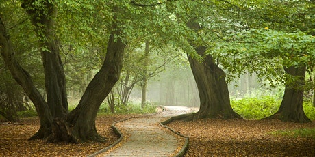 Acorns - Childrens Forest Club for ages 2 - 4 tickets