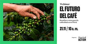 El futuro del café, Desafíos y retos para la...