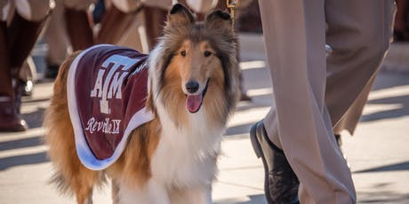 Houston Aggie Women - Monthly Meeting tickets