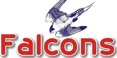 Falcons Greatest Christmas Show