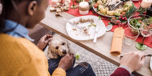 Pet Etiquette: Holiday Edition