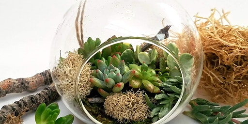 Succulent Holiday Ornament