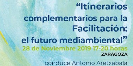 Itinerarios complementarios para  facilitación: el futuro medioambiental... entradas