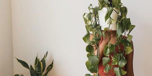 Happy Plant Workshop