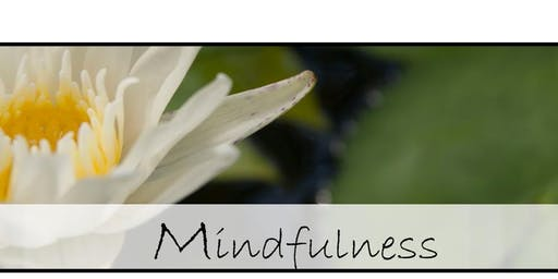Mindfulness Lunch & Learn