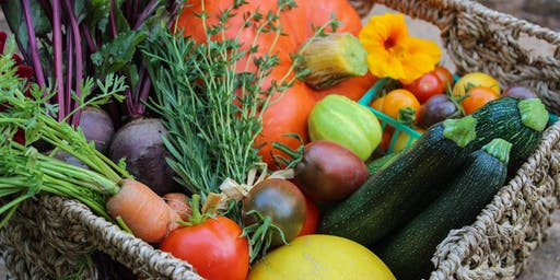 The Basics of Vegetable Gardening