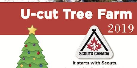 U Cut Christmas Tree - 2nd Beaver Bank Scouting - Sunday tickets