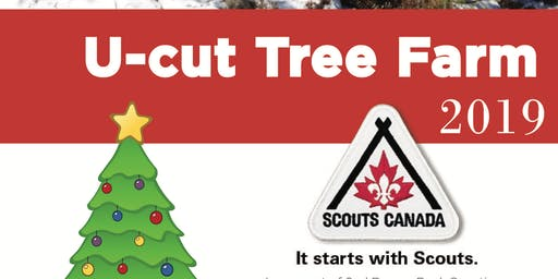 U Cut Christmas Tree - 2nd Beaver Bank Scouting - Sunday