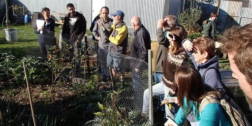 Introduction to Permaculture 2020 - NOVEMBER