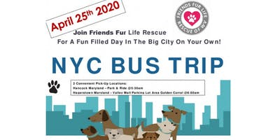 NYC Day Trip with Friends Fur Life Rescue