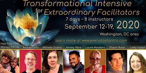 2020 Transformational Intensive For Extraordinary Facilitators
