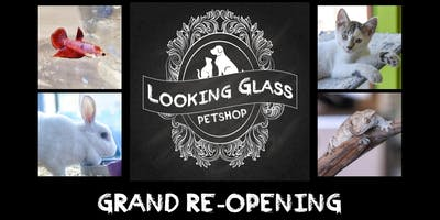 Grand Reopening! Looking Glass Pet Shop
