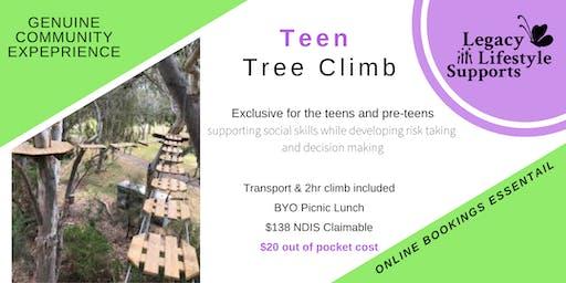 TreeTop Climb Adventure