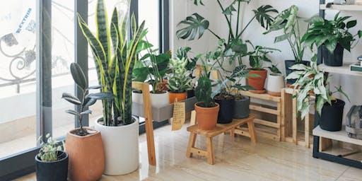 Plant Swap Charlotte
