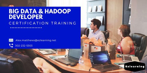 Big Data and Hadoop Developer Certification Training in North Bay, ON